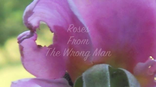 Roses From The Wrong Man