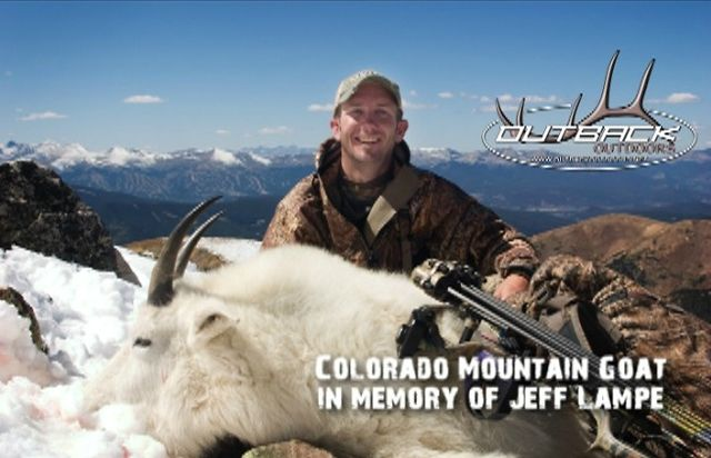 Colorado Mountain Goat - Tribute to Jeff Lampe