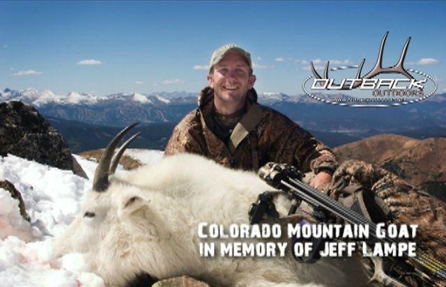Colorado Mountain Goat - Tribute to Jeff Lampe