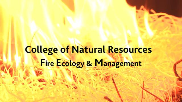 University Of Idaho College Of Natural Resources