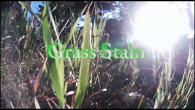 Grass Stain