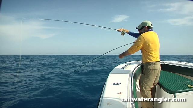 Florida fly fishing on vimeo for Key west fly fishing