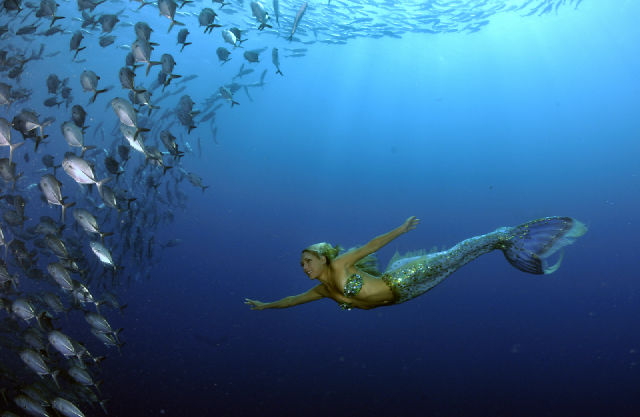 Hannah Mermaid swims Bali shipwreck