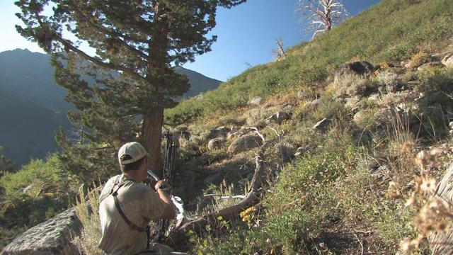 Most Incredible Bear Hunting Footage...EVER??