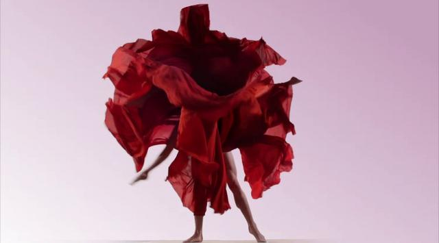 Experiment No.9 'Dynamic Blooms' by Tell No One & Nick Knight