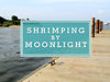 My Gulf: Shrimping by Moonlight