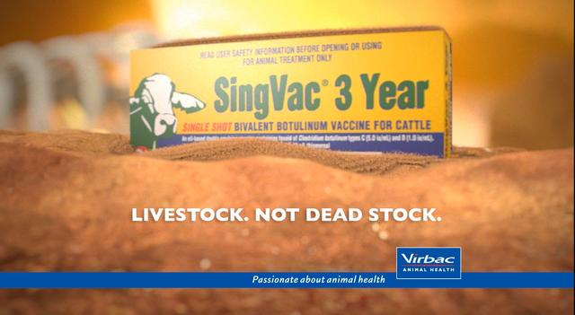 SingVac - Year 3