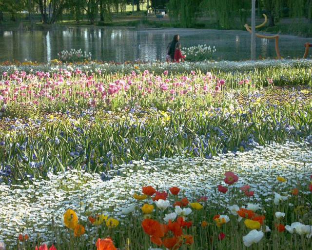 Floriade, Canberra.