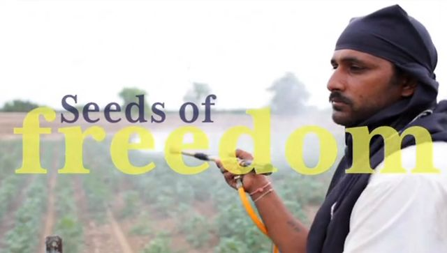 Seeds of Freedom - Trailer