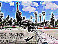 Jason Barr... frontside quickie@the lincoln jersey