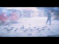 Chasing Birds - LomoKino (00:09)