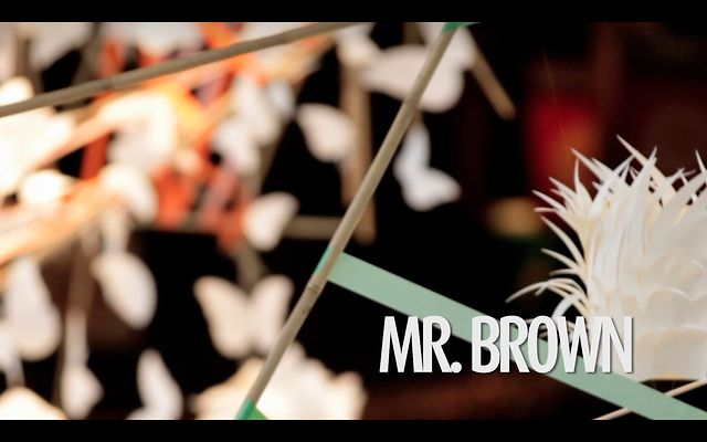 #008 MR.BROWN