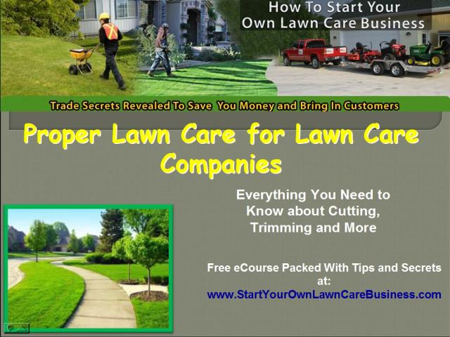 lawncare business