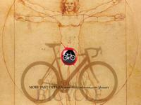 Bicycle Anatomy for Beginners