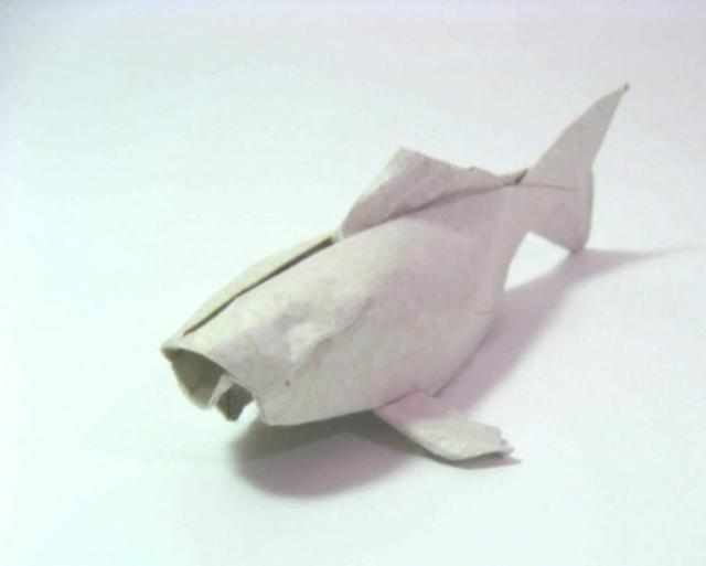 The making of an origami koi on vimeo for Origami koi fish