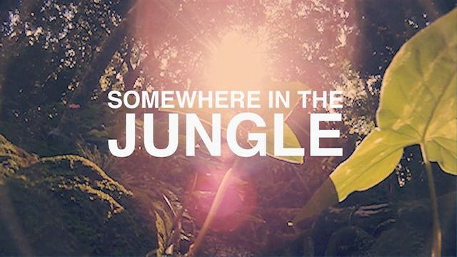 Somewhere in the Jungle