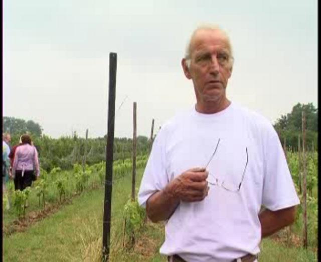 Dick Hollander wijnen