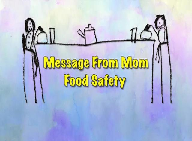 The Food Safety And Hygiene England Amendment Regulations