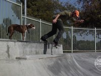Straight to the Internet: Clint Peterson & Friends