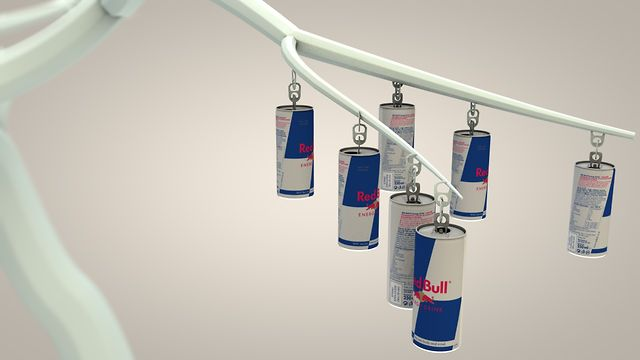 Redbull Canimation Entry