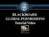 Blackboard Global Permissions