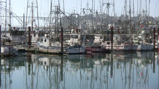 Newport oregon yaquina bay fishing fleet on vimeo for Newport oregon fishing