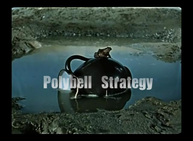Option Command - Polybell Strategy