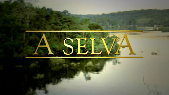A Selva /The Forest