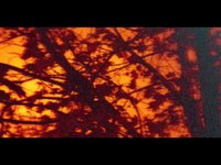 Lomokino - a redscale fall (00:06)