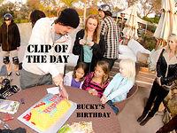 COTD Bucky's Birthday