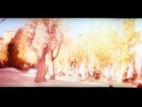 Trees (00:03)