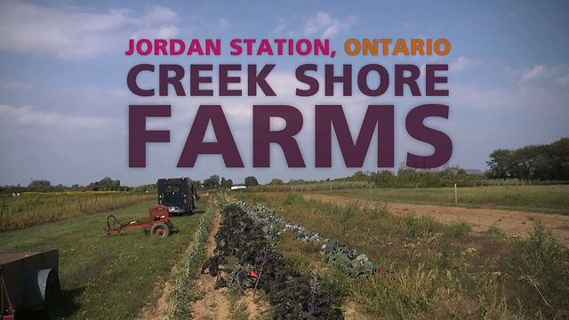 Creek Shore Farms