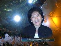 Шинэ жилийн мэндчилгээ (Монголжин студи)