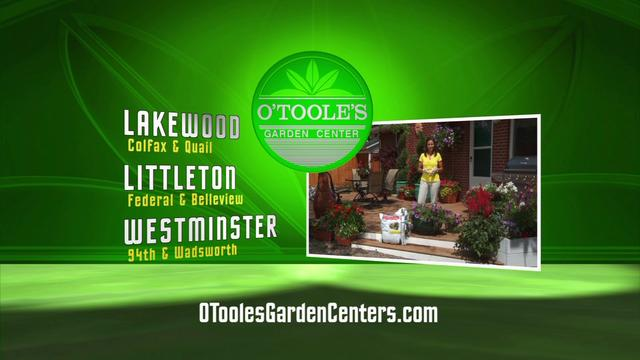 O'Toole's Instant Planters TV30 (English)