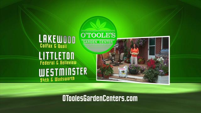 O'Toole's Instant Planters TV30 (Spanish)