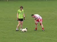 'Ruff' play at Healy Park