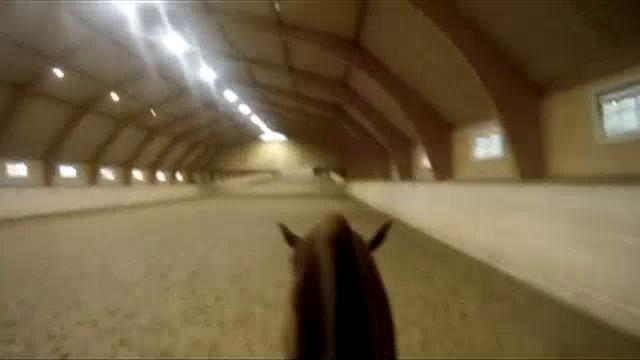 'It's Broadway!' Part II - The Rider, the Horse and the Choreography'.