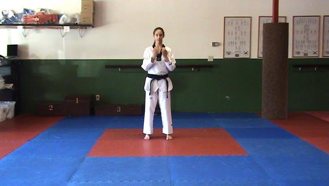 wtf taekwondo poomsae adobe