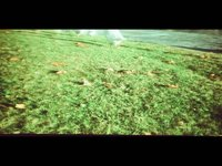 my lomokino minimovie (00:36)