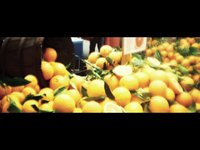 Farmers Market (00:57)