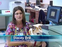 Dog with Jobs: Pet Therapy