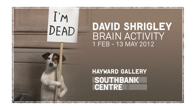 Brain Activity - David Shrigley