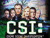 CSI Season 6