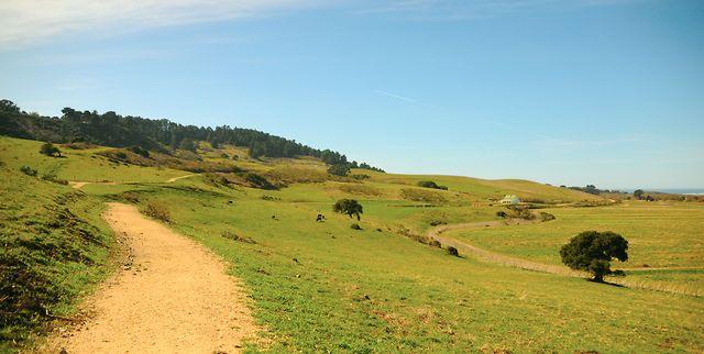 Palo Corona Regional Park, Carmel Valley
