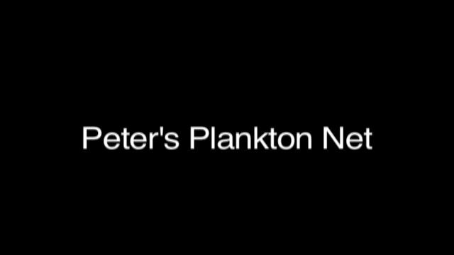 Video Report 3: Peter's Plankton