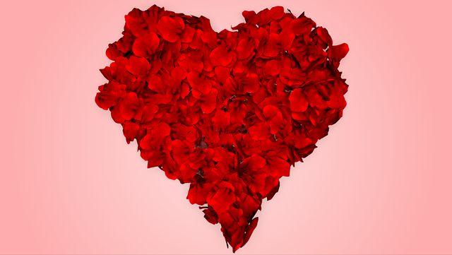 Rose petals fall into heart shape alpha included on vimeo