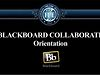 Blackboard Collaborate - Orientation