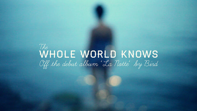 Thumbnail of video Bird - The Whole World Knows