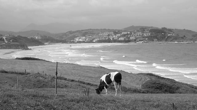 Cantabria Surf trip - HD