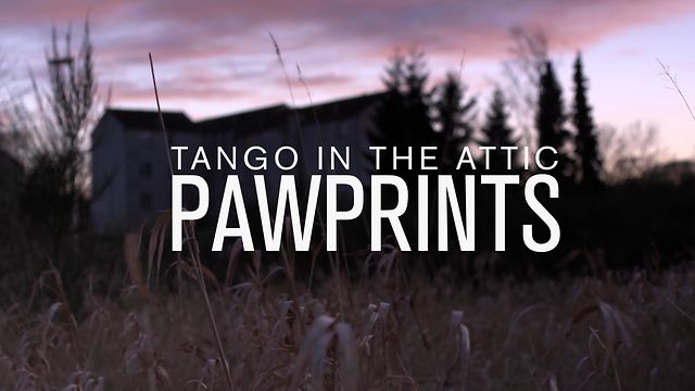 Tango in the Attic - Paw Prints MUSIC VIDEO